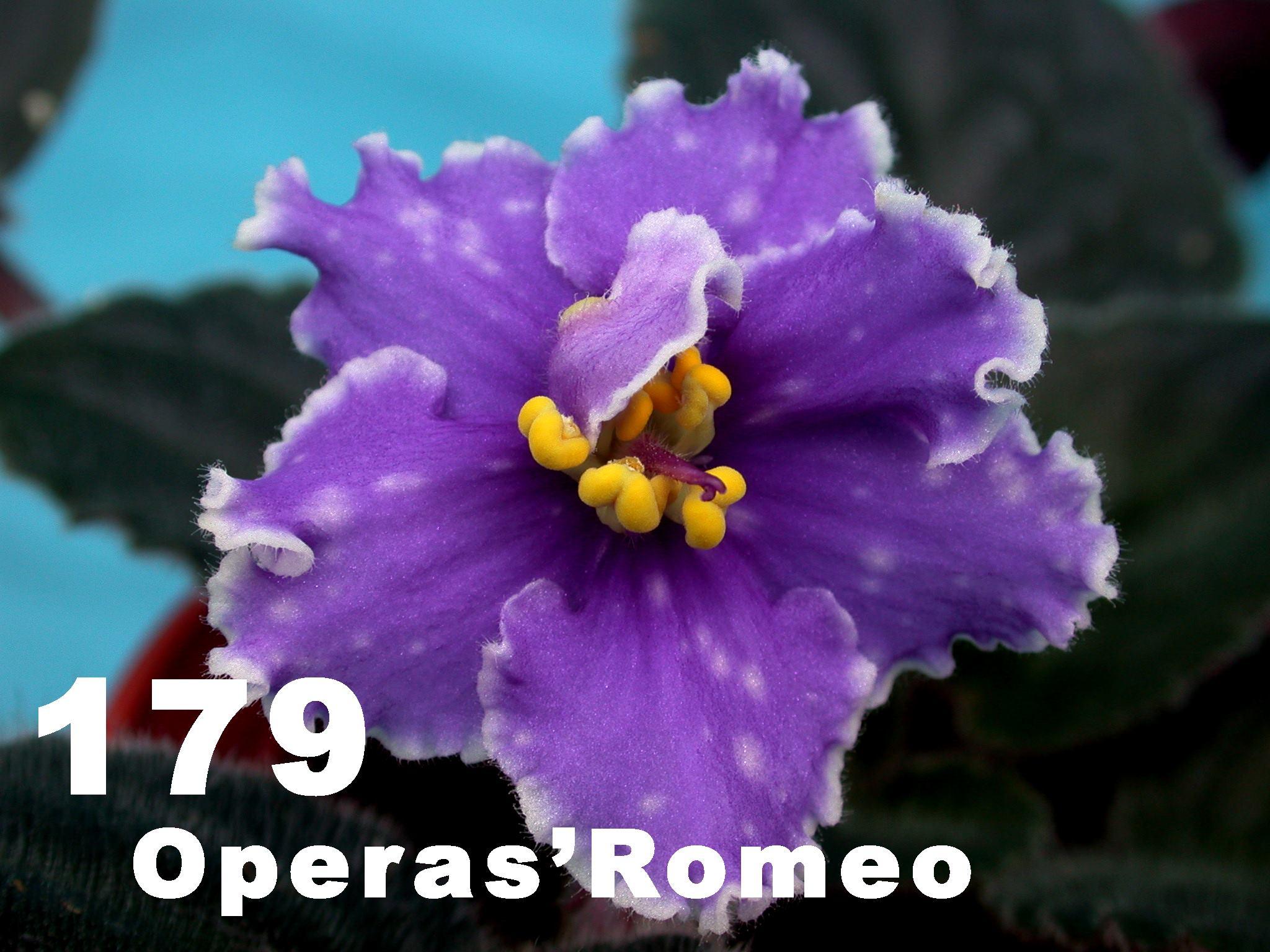 [179] Opera's Romeo 179