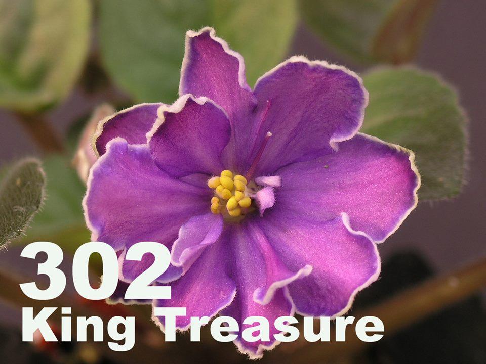 [302] King's Treasure 302