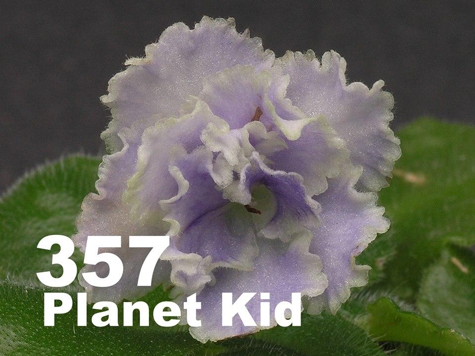 [357] Planet Kid 357