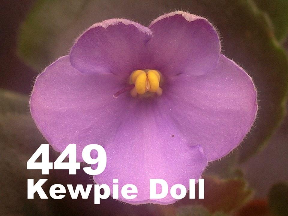 [449] Kewpie Doll 449