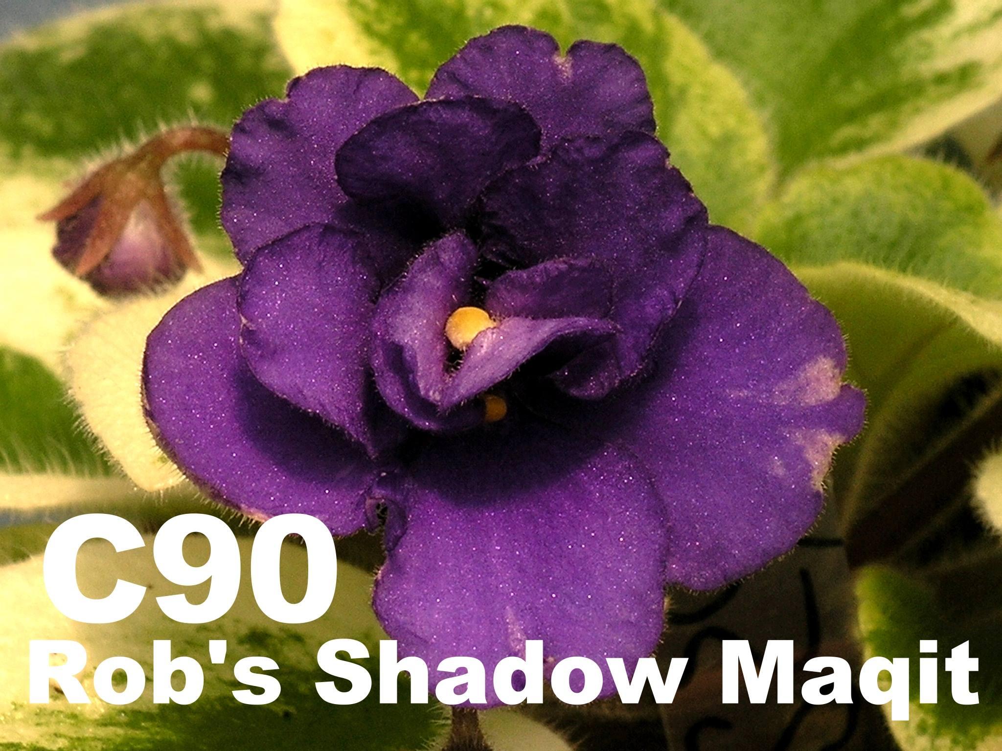 [C90] Rob's Shadow Magic C90