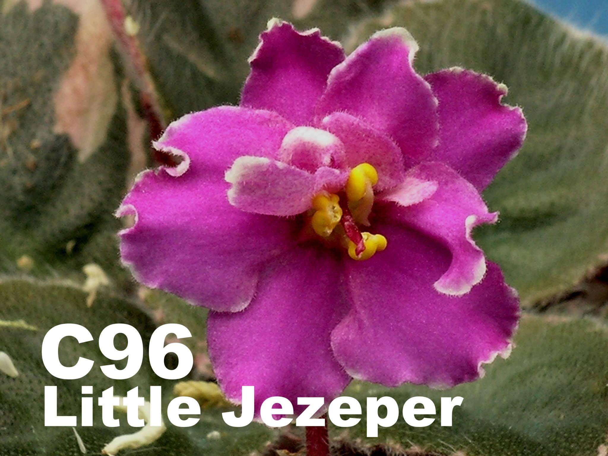 [C96] Little Jezeper C96