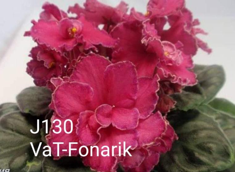 [J130] VaT-Fonarik J130