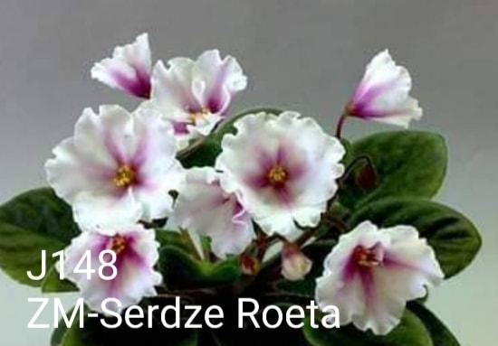 [J148] ZM-Serdze Roeta J148